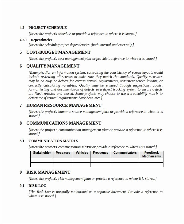 Project Management Plan Example Lovely Project Plan Template 17 Free Word Pdf Document