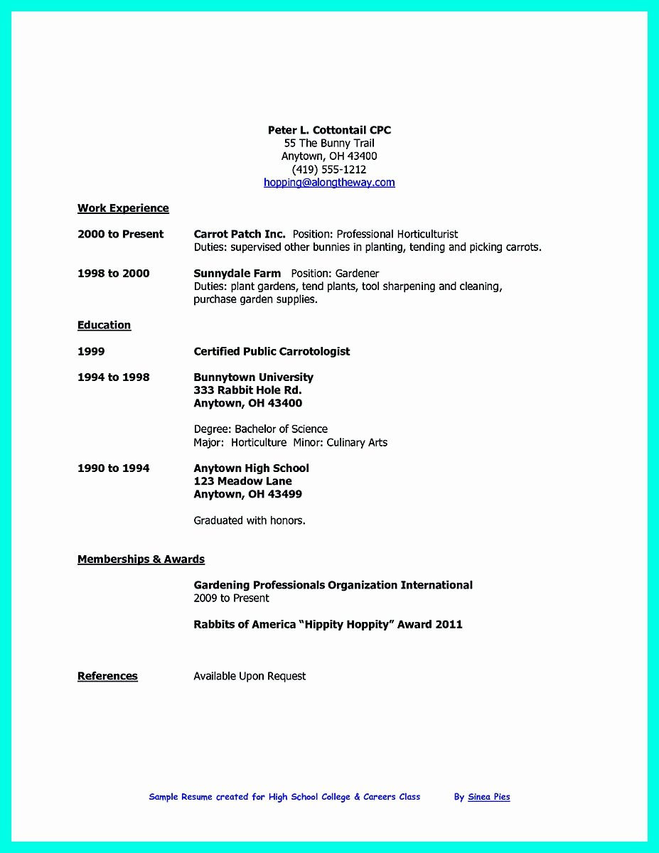 Resume Samples for College Student New Best College Student Resume Example to Get Job Instantly