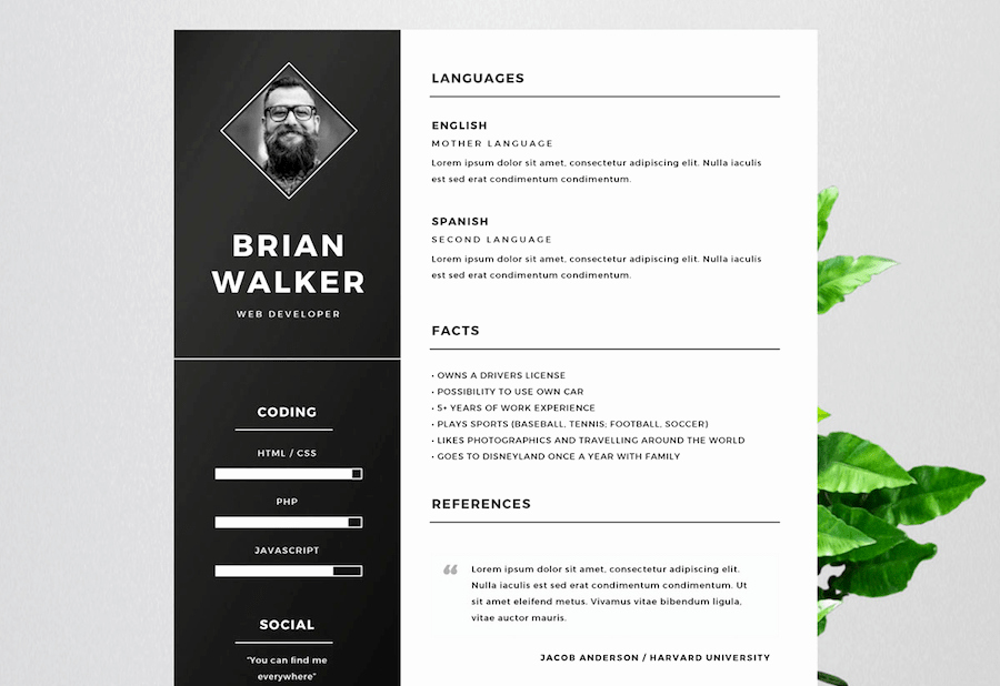 Resume Templates Free Word Luxury 65 Eye Catching Cv Templates for Ms Word
