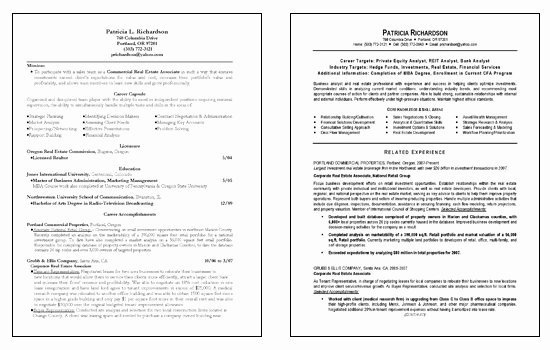 Sample Business Analyst Resume Elegant Business Analyst Resume Example