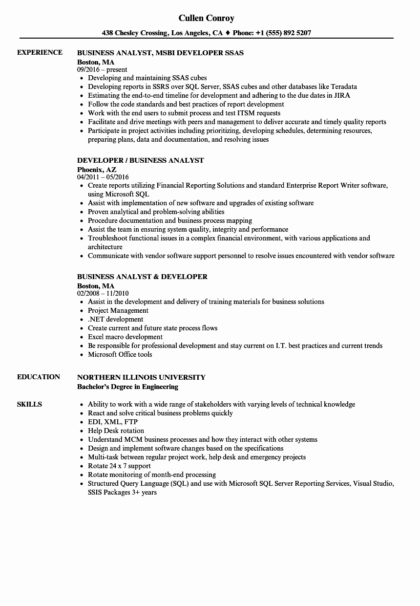 Sample Business Analyst Resume Elegant Developer Business Analyst Resume Samples