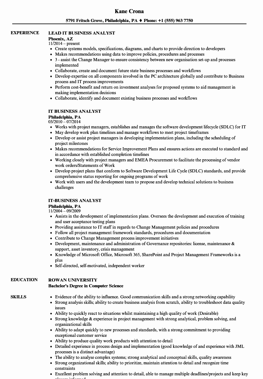 Sample Business Analyst Resume New It Business Analyst Resume Samples