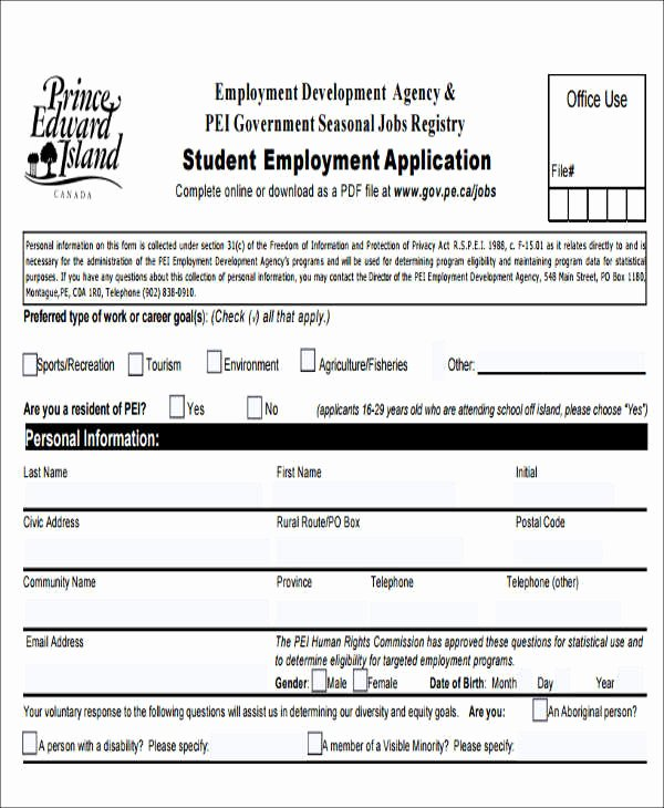 Sample Job Application form Fresh 49 Job Application form Templates