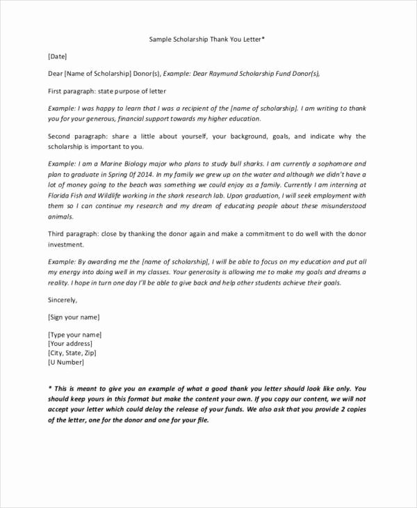 Sample Scholarship Thank You Letter Beautiful 34 Free Thank You Letters