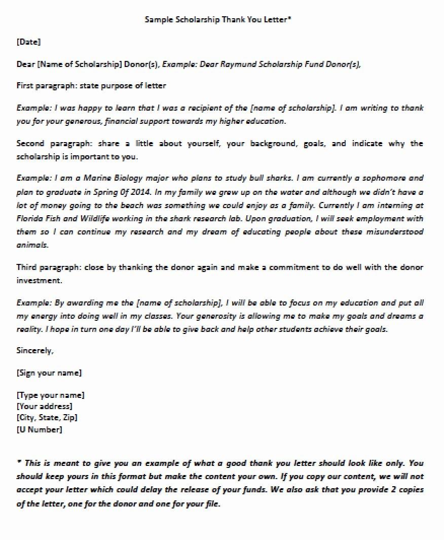 Sample Scholarship Thank You Letter Inspirational Download Scholarship Thank You Letter Templates