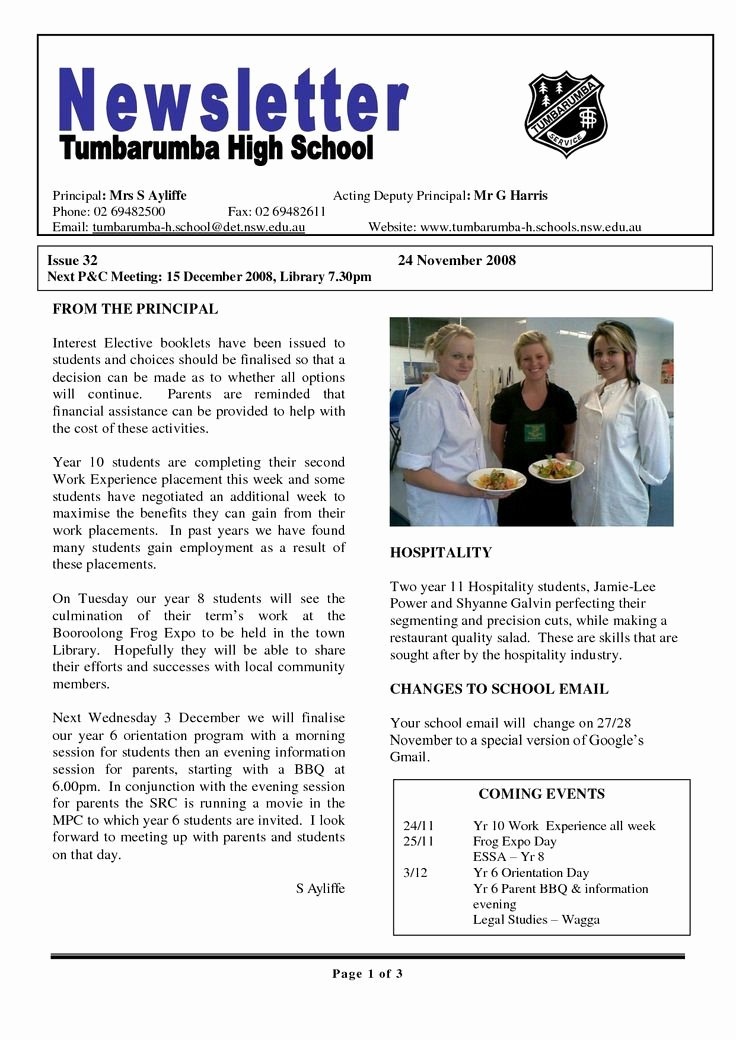 School Newsletter Templates Free Awesome 18 Best Anti Design Images On Pinterest