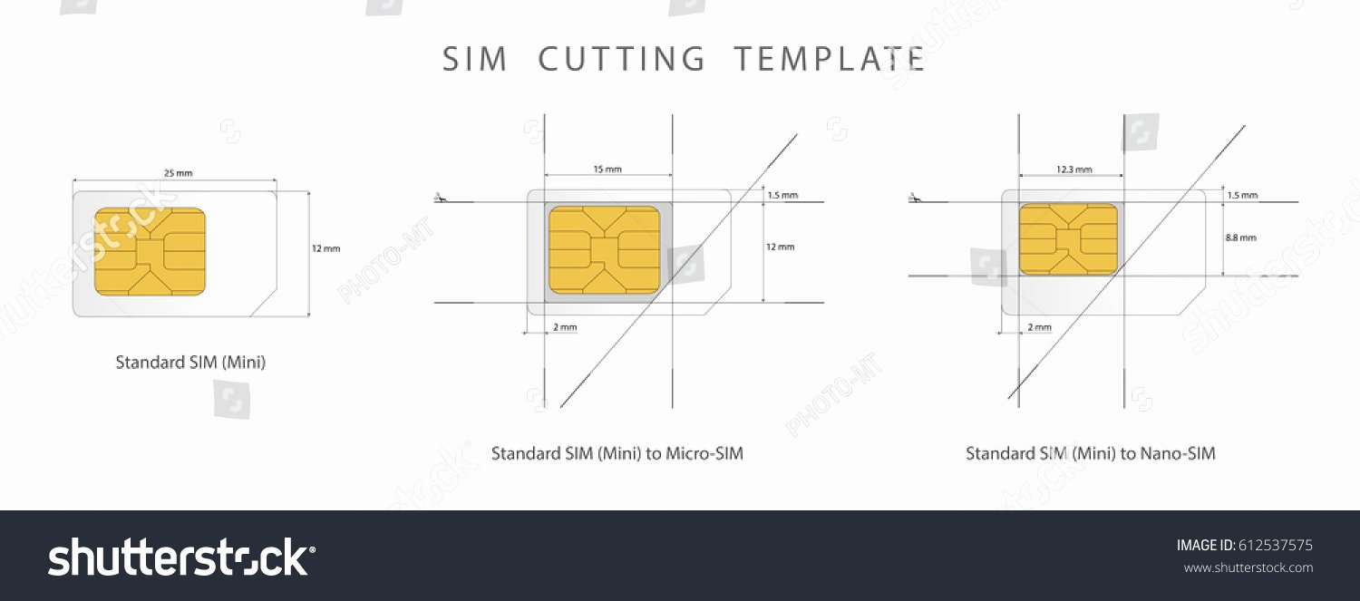 Sim Card Cutting Template New Sim Card Cutting Template Standard Micro Stock Vector