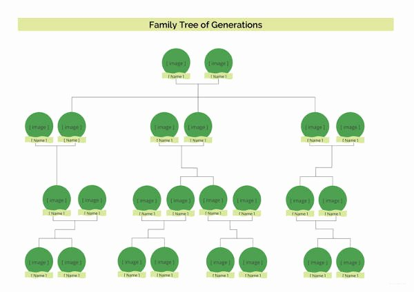 Simple Family Tree Template Best Of Simple Family Tree Template 27 Free Word Excel Pdf