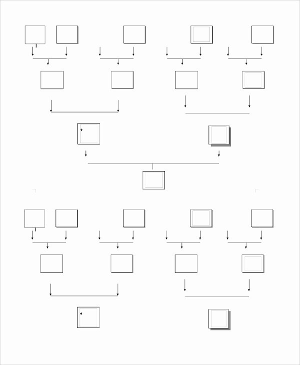Simple Family Tree Template Lovely Sample Blank Family Tree Template 8 Free Documents
