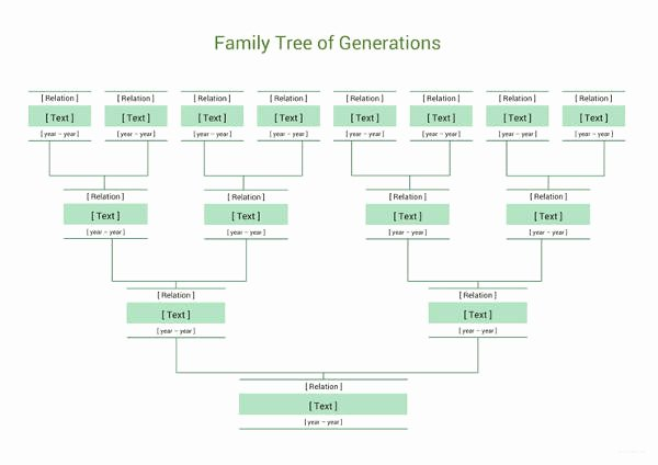 Simple Family Tree Template Lovely Simple Family Tree Template 27 Free Word Excel Pdf