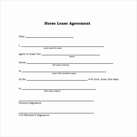 Simple Lease Agreement Pdf Unique Sample Horse Lease Agreement 9 Free Documents In Pdf Word
