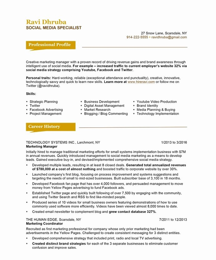 Social Media Manager Resumes Unique social Media Specialist Free Resume Samples