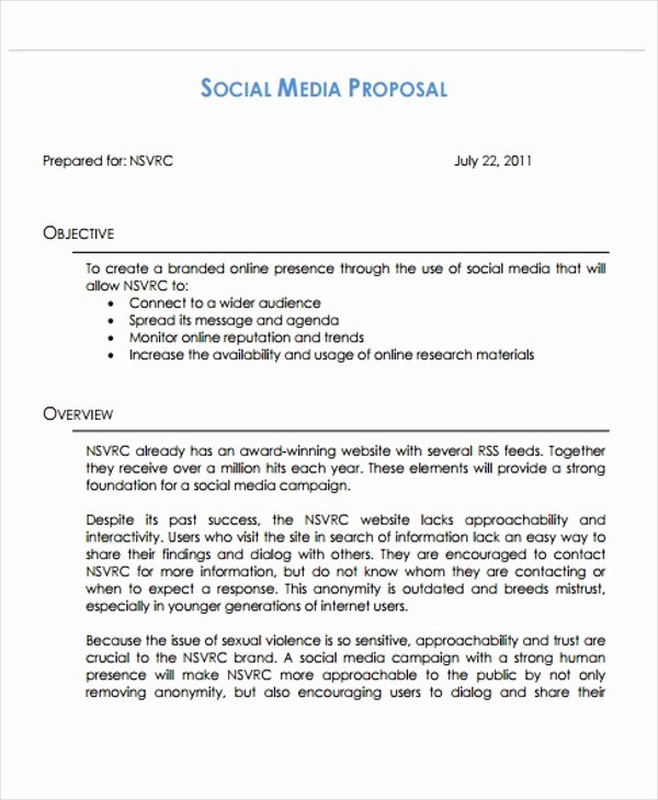 Social Media Proposal Template Elegant 13 social Media Proposal Templates Free Word Pdf format