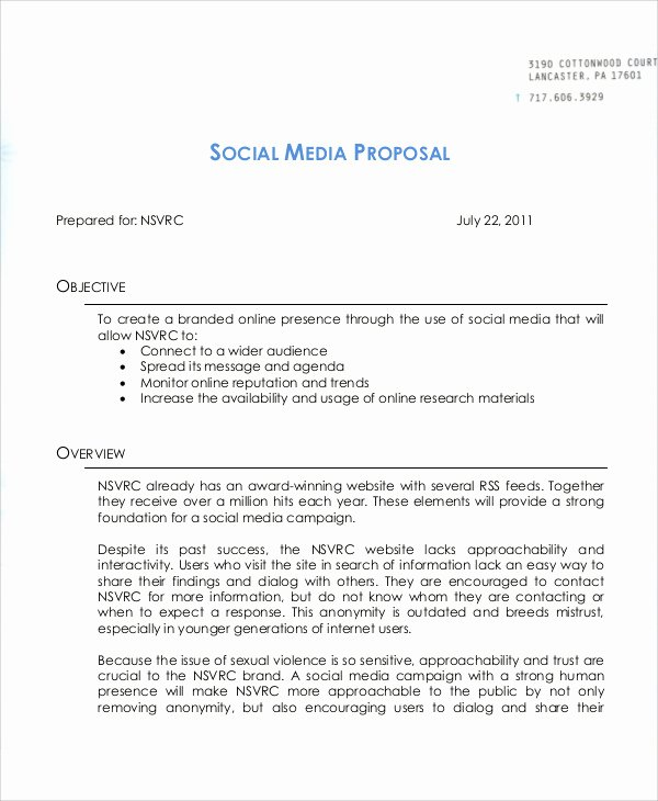 Social Media Proposal Template Luxury 11 Campaign Proposal Templates Word Pdf