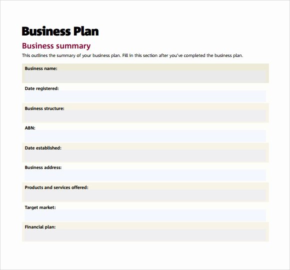 Startup Business Plan Template Pdf Luxury Small Business Plan Template 9 Download Free Documents