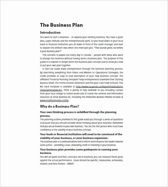 Startup Business Plan Template Pdf Unique Startup Business Plan Template – 17 Free Word Excel Pdf