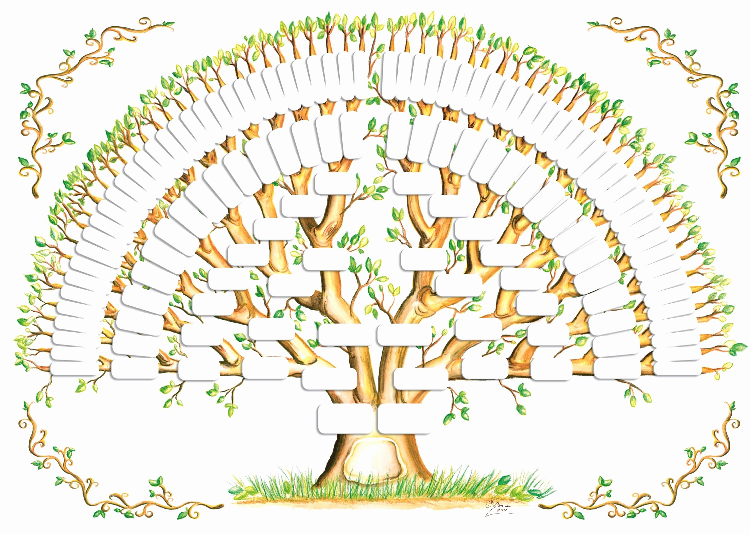 Template for Family Tree Beautiful 5 Generation Family Tree Template Tree Gallery