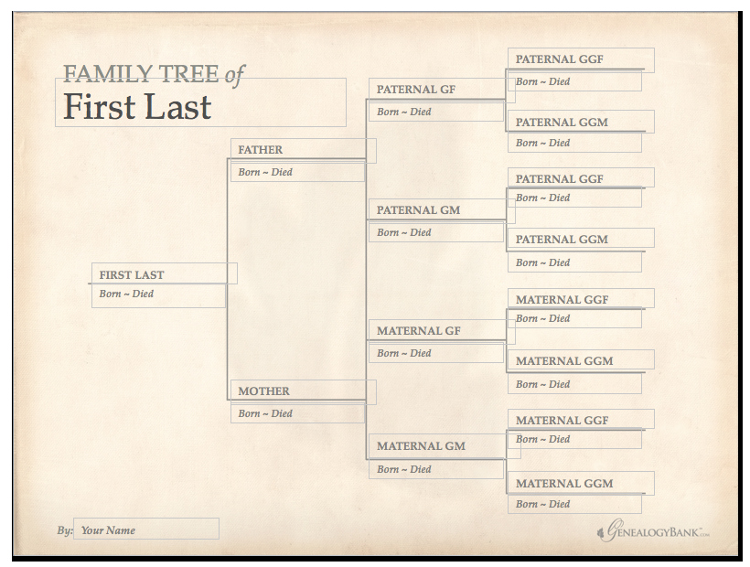 Template for Family Tree Elegant Family Tree Template & How to Get Started