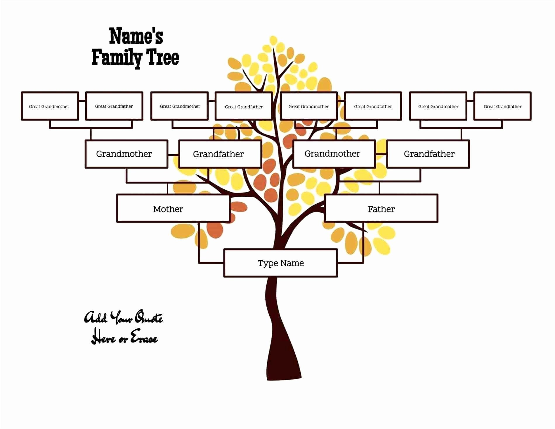 Template for Family Tree Fresh Free Editable Family Tree Template Daily Roabox