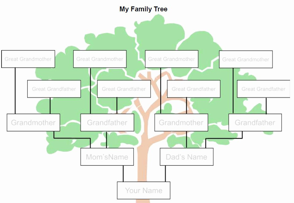Template for Family Tree Luxury Family Tree Template