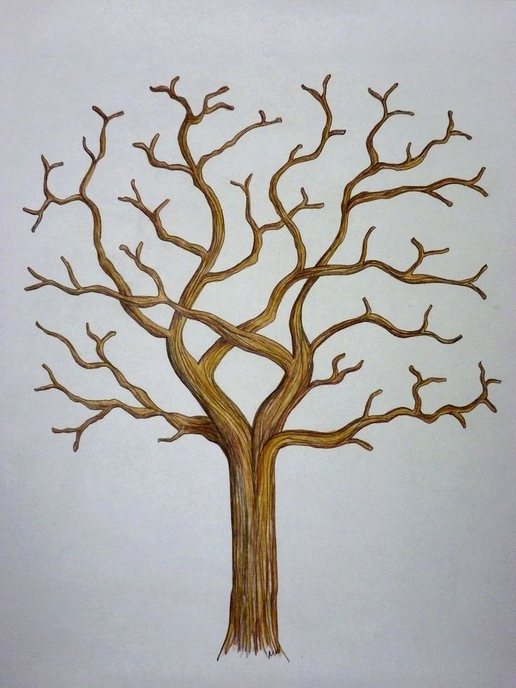 Template for Family Tree Unique 1000 Ideas About Family Tree Templates On Pinterest