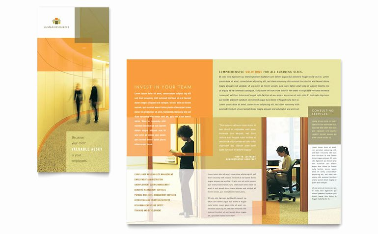 Tri Fold Brochure Size Lovely Hr Consulting Tri Fold Brochure Template Word & Publisher