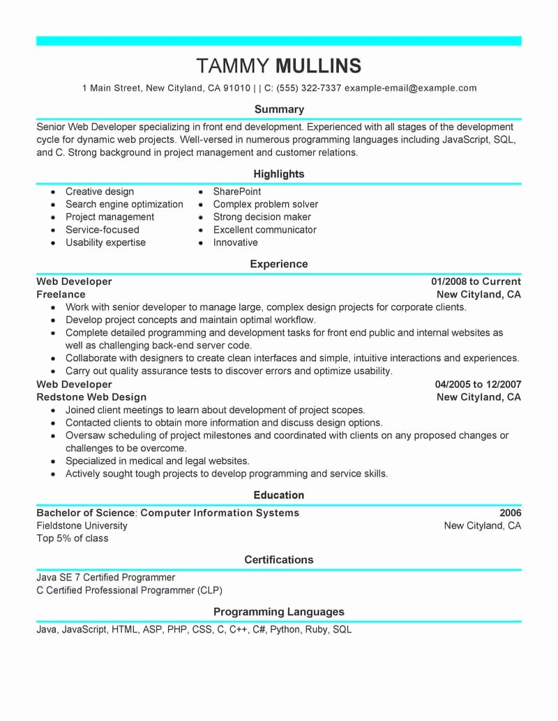 Web Developer Resume Sample Best Of Best Web Developer Resume Example