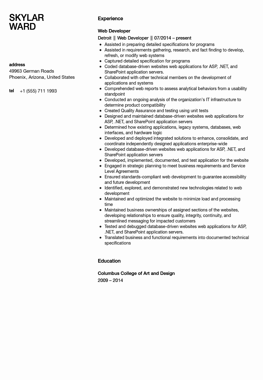 Web Developer Resume Sample Unique Web Developer Resume Sample