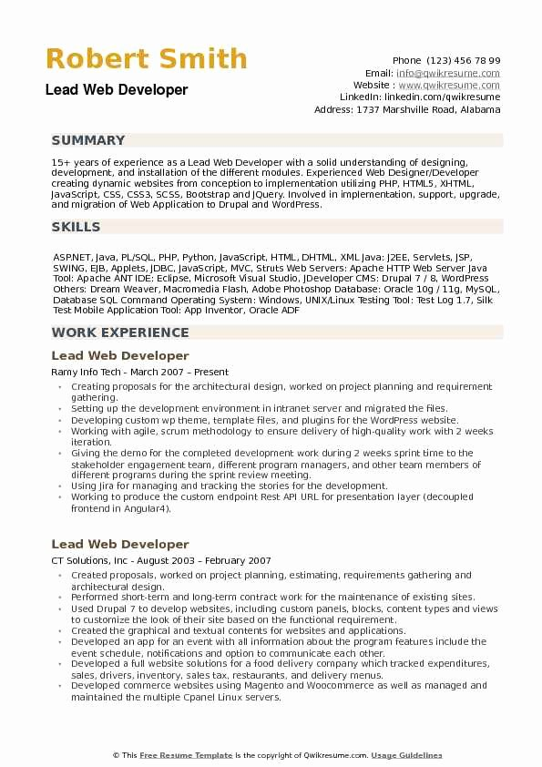 Web Developer Resume Template Inspirational Lead Web Developer Resume Samples