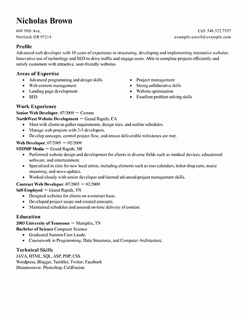 Web Developer Resume Template Unique Best It Web Developer Resume Example