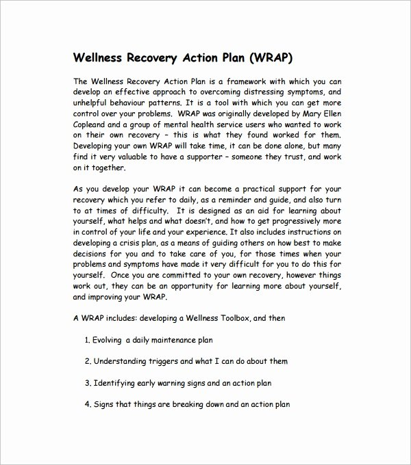 Wellness Recovery Action Plan Pdf Fresh Sample Action Plan Template Download Free Documents In