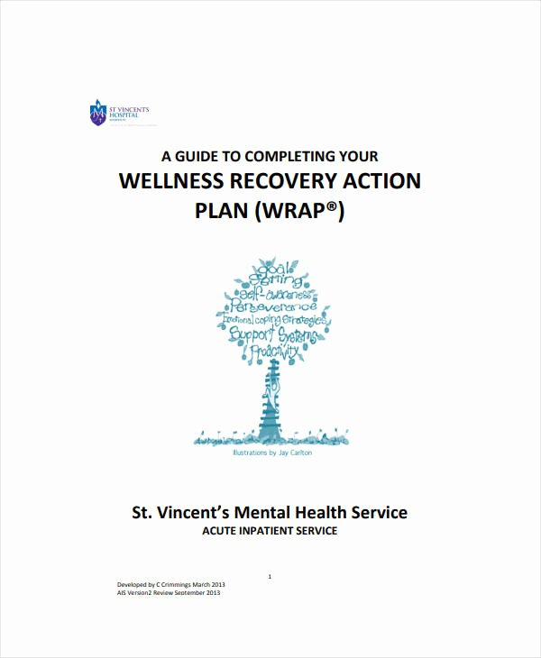 Wellness Recovery Action Plan Pdf Lovely 11 Wellness Recovery Action Plan Templates Pdf Word