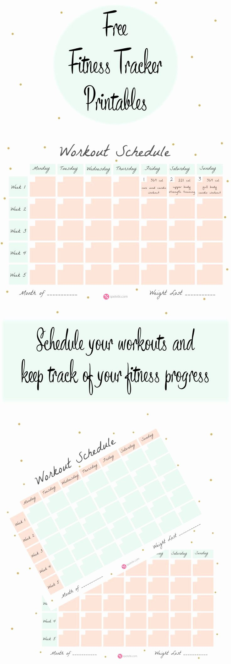 Work Out Schedule Templates Unique Workout Schedule Template