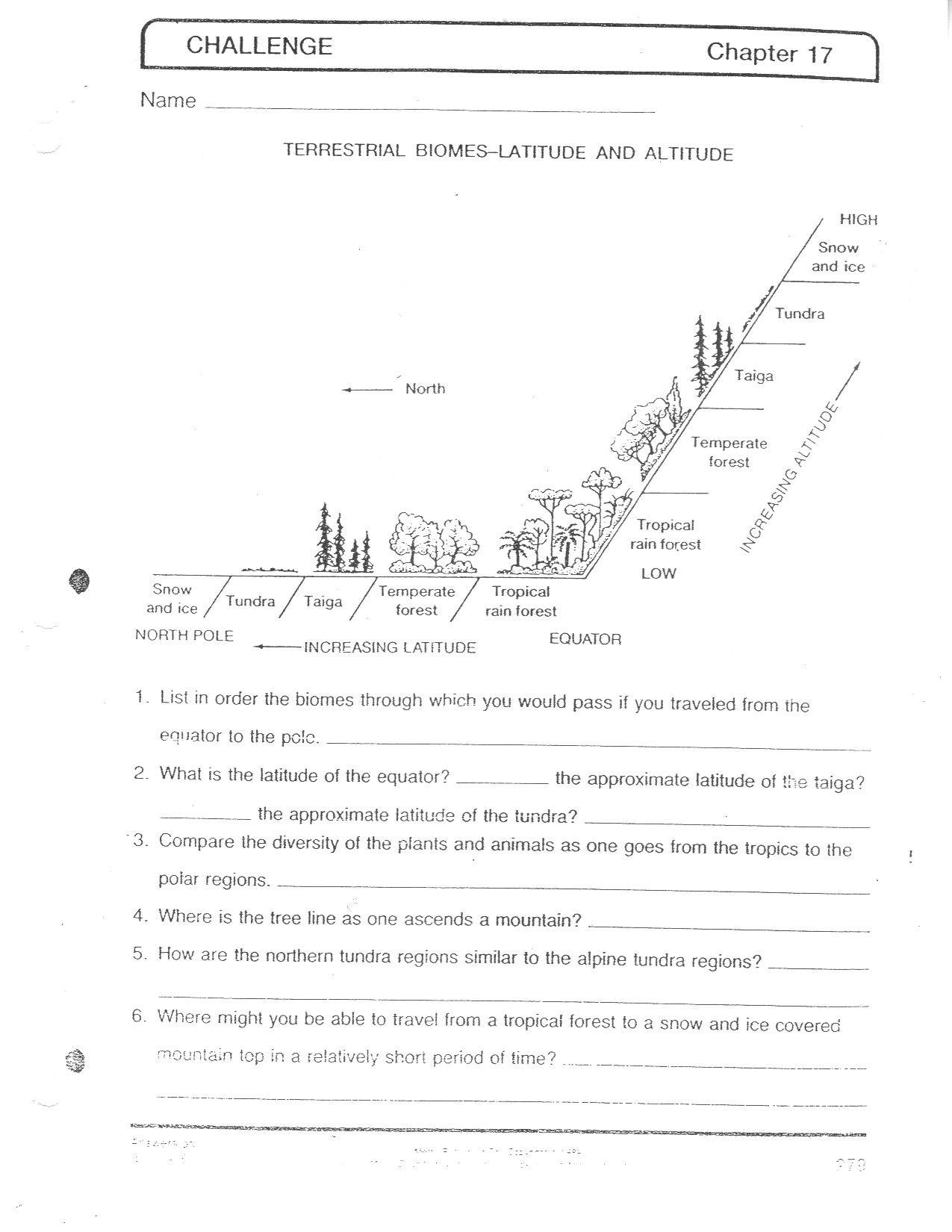 3rd Grade Ecosystem Worksheets Ecosystem Worksheets Grade 5