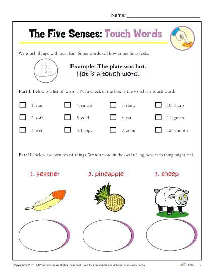 5 Senses Kindergarten Worksheets 5 Senses Kindergarten the Five Senses Words Activity touch 5
