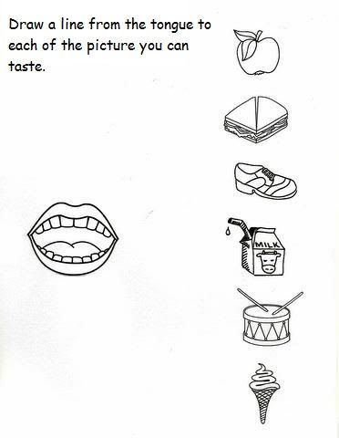 5 Senses Kindergarten Worksheets 5 Senses Worksheet for Kids 2