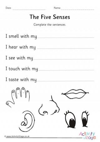 5 Senses Kindergarten Worksheets Five Senses Worksheets