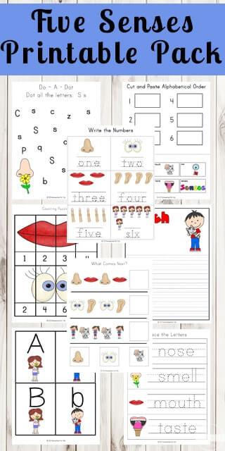 5 Senses Printable Worksheets Five Senses Printable Pack