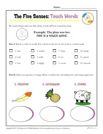 5 Senses Worksheet for Kindergarten 5 Senses Kindergarten the Five Senses Words Activity touch 5