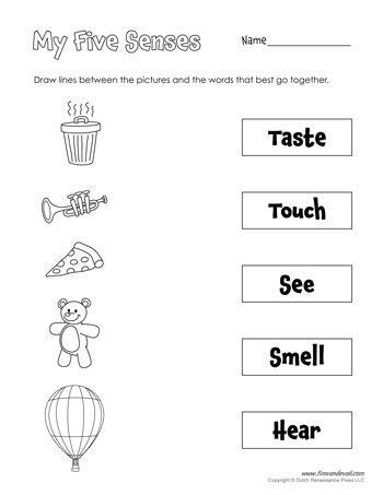 5 Senses Worksheets for Kindergarten Five Senses Matching
