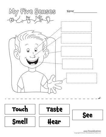 5 Senses Worksheets for Kindergarten Free Five Senses Worksheets for Kids
