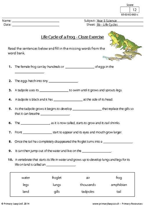 5th Grade Science Practice Worksheets Primaryleap Life Cycle Of A Frog Cloze Exercise