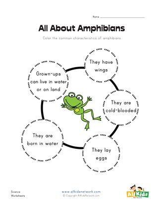Amphibian Worksheets for Second Grade All About Amphibians Worksheet