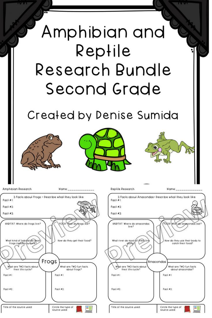 Amphibian Worksheets for Second Grade Amphibian and Reptile Research Second Grade