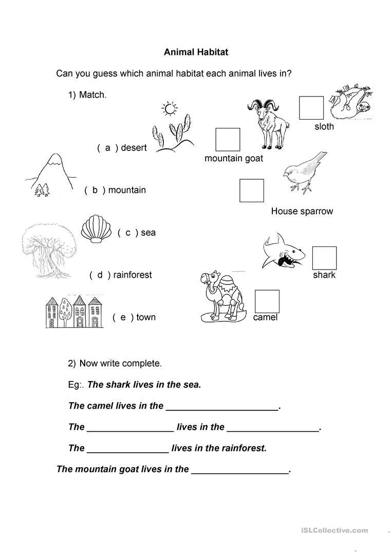 Animal Habitat Worksheets for Kindergarten Animal Habitat English Esl Worksheets for Distance