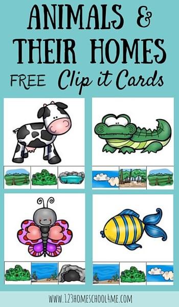 Animal Habitat Worksheets for Kindergarten Free Animal Homes for Kids Clip It Cards