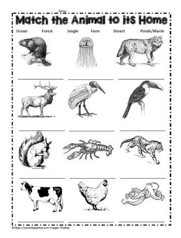 Animal Habitat Worksheets for Kindergarten Match the Animals to their Habitat Worksheets