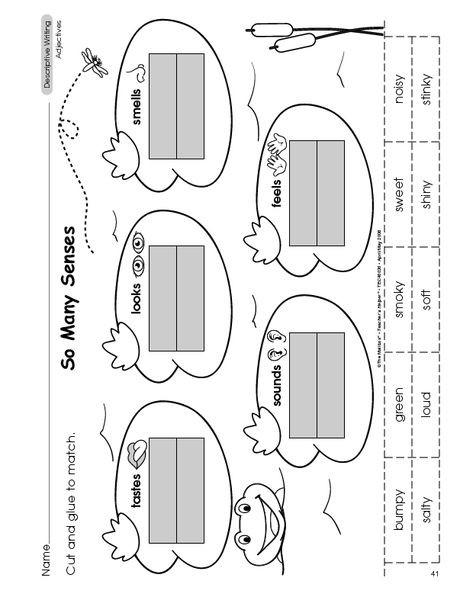 Categorizing Worksheets for Kindergarten L 1 5 Classify and Categorize by 5 Senses