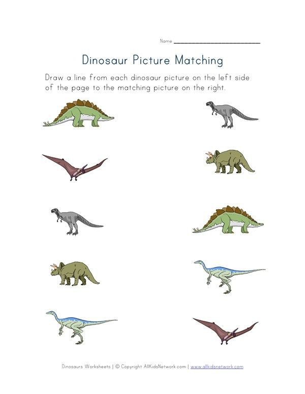 Dinosaur Worksheets for Kindergarten Dinosaurs Matching Worksheet