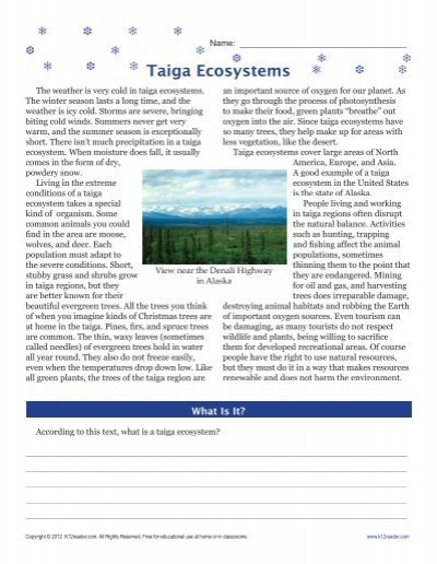 Ecosystem Worksheets 4th Grade 6th Grade Reading Prehension Worksheets